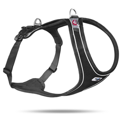 Curli Magnetic Belka Comfort Geschirr schwarz, Größe: S