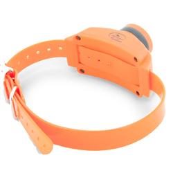 SportDog Zusatz Hundehalsband / Erziehungshalsband mit Pieper
