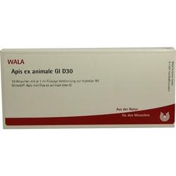 APIS EX ANIMALE GL D30
