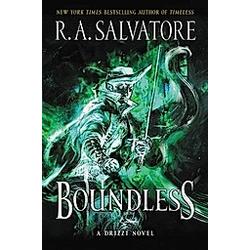 Boundless. Robert A. Salvatore  - Buch