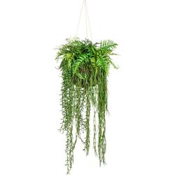 Künstliche Zimmerpflanze Dekokugel zum Hängen Grünpflanze, Creativ green, Höhe 120 cm