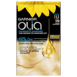 Garnier Nr. 110 - Kühles Aschblond Haarfarbe
