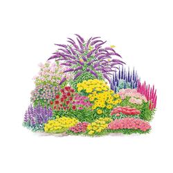 BCM Beetpflanze Schmetterling Set, bunt gemischt