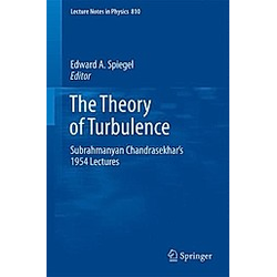 The Theory of Turbulence - Buch