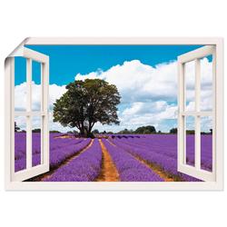 Artland Wandbild Fensterblick Lavendelfeld im Sommer, Fensterblick (1 Stück) 70 cm x 50 cm