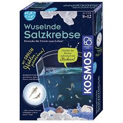 KOSMOS Experimentierkasten Wuselnde Salzkrebse