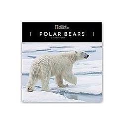 Polar Bears - Polarbären - Eisbären 2021