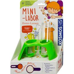 Mini-Labor