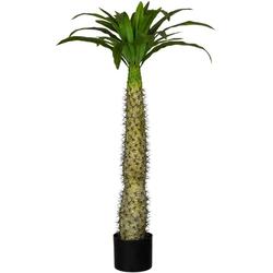 Künstliche Zimmerpflanze Madagaskarpalme Pachypodium Madagaskarpalme Pachypodium, Creativ green, Höhe 100 cm