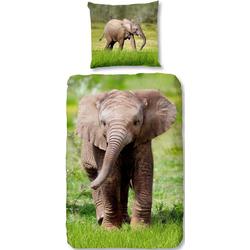 Kinderbettwäsche Elephant, good morning, mit Elefant grün