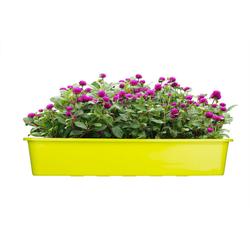 BigDean Blumenkasten für den Balkon − 3x Balkonkasten 80 cm Lime (3 Stück) 80 cm
