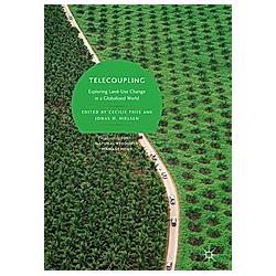 Telecoupling - Buch