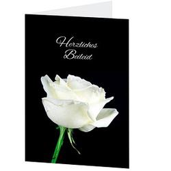 LUMA Trauerkarte weiße Rose DIN B6
