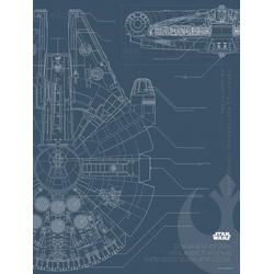 Komar Poster Star Wars Blueprint Falcon, Star Wars 30 cm x 40 cm