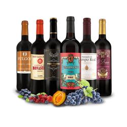 Spanisches Rotwein-Topseller-Probepaket