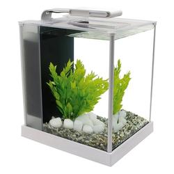 Fluval SPEC Süßwasser Aquarium Set, SPEC - 10,7 l weiß (22,3 x 32,5 x 27,5 cm)