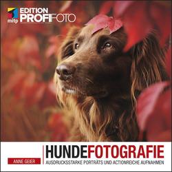Hundefotografie: Buch von Anne Geier