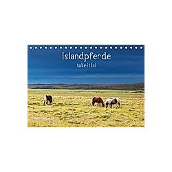 Islandpferde take it Isi (Tischkalender 2021 DIN A5 quer)
