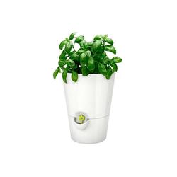 Emsa Kräutertopf Kräutertopf Fresh Herbs weiß 17 cm