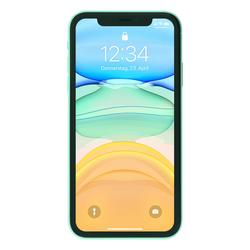 Apple iPhone 11 256 GB Grün [15,5cm (6,1