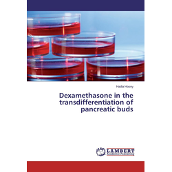 Dexamethasone in the transdifferentiation of pancreatic buds als Buch von Hadia Hosny