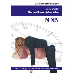 Nebennierenschwäche Wissen für Therapeuten als Buch von Evelyn Wurster