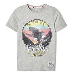Name It T-Shirt T-Shirt NKMDSINAI für Jungen grau 122/128