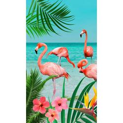 good morning Strandtuch Flamingo (1-St), mit Flamingos