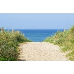 Fototapete Dune at the Ocean, glatt 2,50 m x 1,86 m