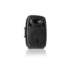 Auna SLK-10-A Aktiver PA Lautsprecher 10