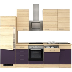Küchenblock mit E-Geräten Einbauküche mit Elektrogeräten Küche 280 cm aubergine