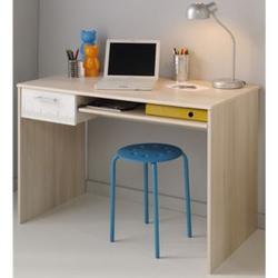 Parisot Schreibtisch