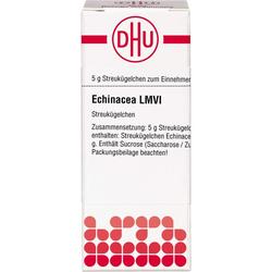 LM ECHINACEA HAB VI Globuli 5 g