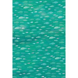 Heyda Designpapier Hotfoil, Fische 200 g/qm grün