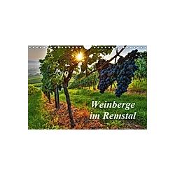 Weinberge im Remstal (Wandkalender 2021 DIN A4 quer)