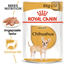 ROYAL CANIN Chihuahua Adult Hundefutter nass in Soße 12 x 85 g