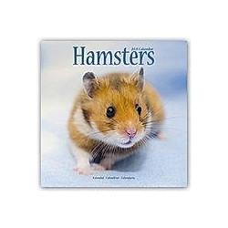 Hamsters - Hamster 2021