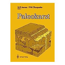 Paleokarst - Buch