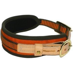 Niggeloh Hundehalsband Schweißhalsung, orange-oliv, M, 011100022
