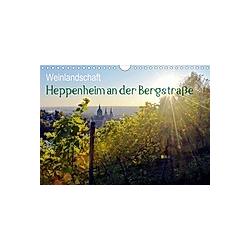 Weinlandschaft - Heppenheim an der Bergstraße (Wandkalender 2021 DIN A4 quer)