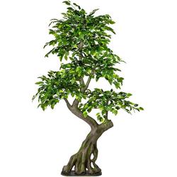Kunstbaum Ficus Benjamini Ficus, Creativ green, Höhe 170 cm