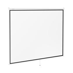 Beamerleinwand - 312,8 x 239 cm - 4:3