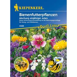 Bienenfutterpflanzen Mischung, einjährig (8,54 € pro 100 g)