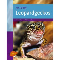Leopardgeckos als Buch von Gerti Keller/ Eva-Grit Schneider