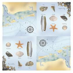 Linoows Papierserviette 20 Servietten Maritim, Muscheln, Meerestiere und, Motiv Maritim, Muscheln, Meerestiere und Landkarte