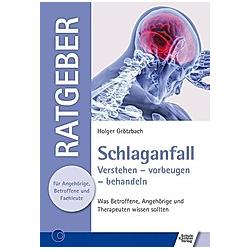 Schlaganfall. Holger Grötzbach  - Buch