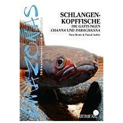 Schlangenkopffische. Nora Brede  Pascal Antler  - Buch