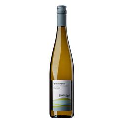 Weingut Wittmann Wittmann Grauburgunder 100 Hügel 2019
