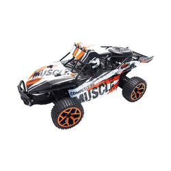 Amewi Spielzeug-Auto RC Sand Buggy Extreme D5