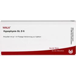 HYPOPHYSIS GL D 6 Ampullen 10 ml